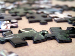 Puzzle Piece, by Wikimedia Commons user Crazy-phunk
